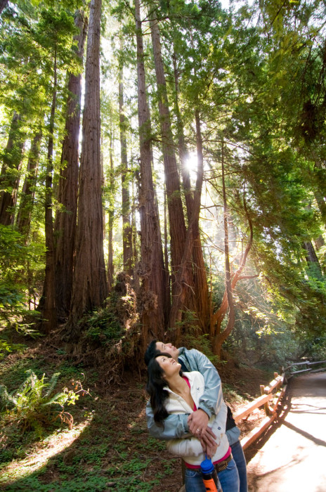 Couple hiking in a redwood forest