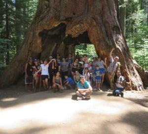 Through a Latino Outdoors program, a youth group enjoys the giant sequoias