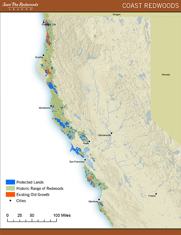 Coastal Redwoods Map
