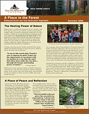 2008 Grove Newsletter