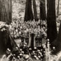 Muir Woods Commemorative Ceremony, May 9, 1945. Photo: James A. Lawrence [#8280]. Save the Redwoods League photograph collection [graphic], BANC PIC 2006.030-PIC, Carton 5. Courtesy of The Bancroft Library, University of California, Berkeley.