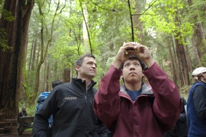 Students collected data about the redwoods forest at BioBlitz 2014.