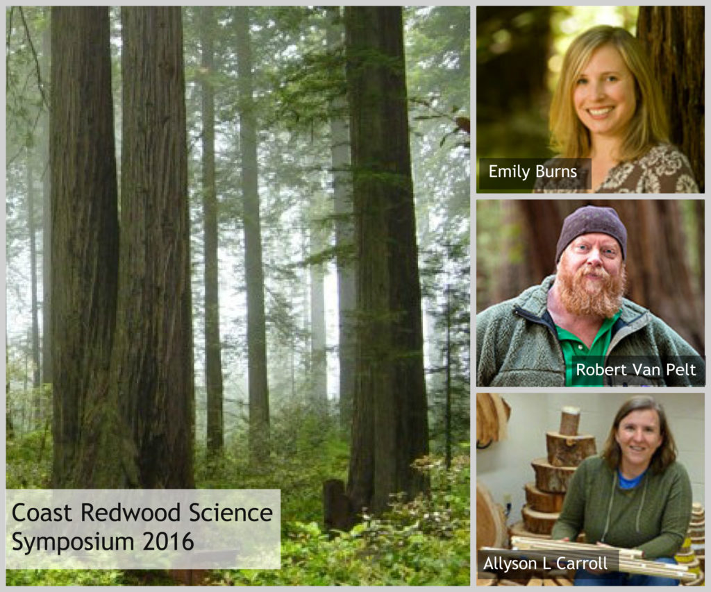 Coast Redwood Science Symposium 2016. Photo of Redwood National Park by Michael Schweppe, Wikimedia Commons