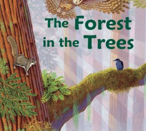 The Forest in the Trees by Connie McLennan