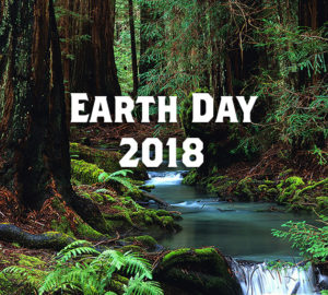 Celebrate the redwoods this Earth Day! Photo by Ken Susman