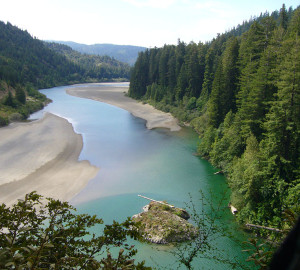 The Eel River, which snakes along the Avenue of the Giants in Humboldt Redwoods State Park, has dozens of secluded and scenic swimming spots. Photo courtesy HRSP/Redwoods.info.