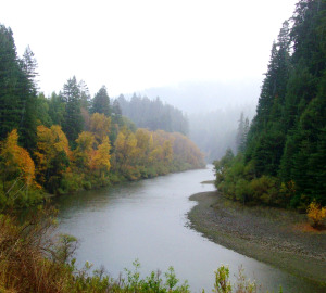 Fall foliage along the Eel River. Photo by mlhradio, Flickr Creative Commons