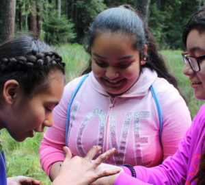 League education grants help students discover the redwood forest through programs like Every Child Outdoors. Photo courtesy of Every Child Outdoors