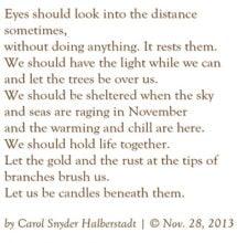 Eyes Should Look by Carol Snyder Halberstadt