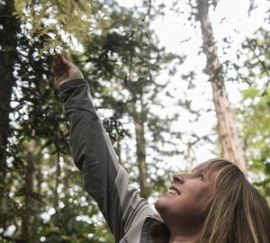 "Emily Burns, PhD, League Director of Science, reaches for the captivating cream-colored needles of an albino sprout growing out of a redwood. ""It lacks chlorophyll, so it's white, and it's caused by a mutation on that particular sprout's DNA,"" she said. Further genomic research could confirm hypotheses that albino sprouts are more than parasites. It's clear that the deeper we go into the redwood genome, the more we'll know. Photo by Paolo Vescia"