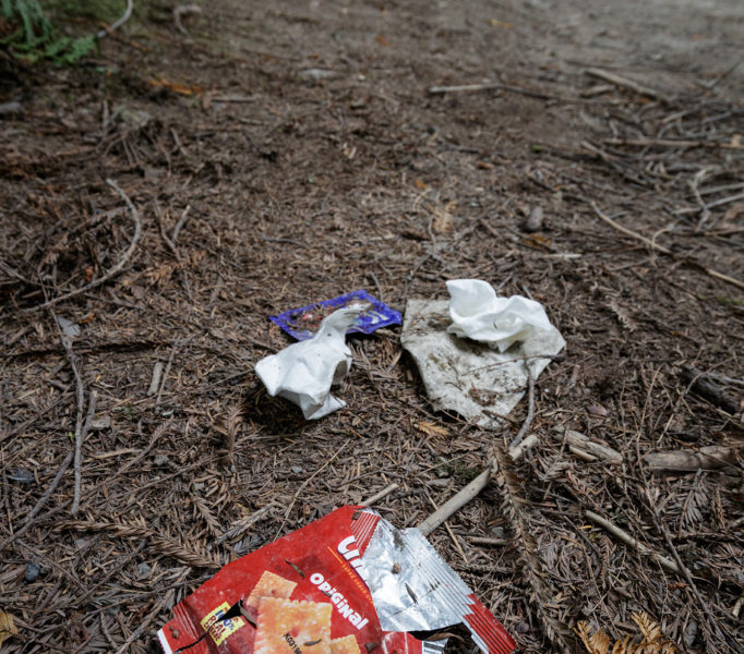 The Grove of Titans project will provide trash bins to mitigate littering like this. Photo by Max Forster