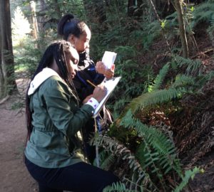 Berkeley High students learning about redwood ecology.