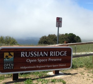 Measure AA will help fund enhancement projects like the newly opened Russian Ridge parking facility.