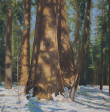 Oil painting from Calaveras Big Trees State Park by Brandon Schaefer, http://www.Brandon-Schaefer.com.