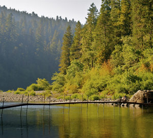 Smith River, Jedediah Smith Redwoods State Park. Photo by Jon Parmentier