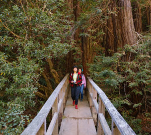 Two women in colorful clothing cross a bridge in the redwoods.