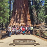 Youth participants in event at Sequoia National Park for Latino Conservation Week 2017. Photo by Martin Martinez