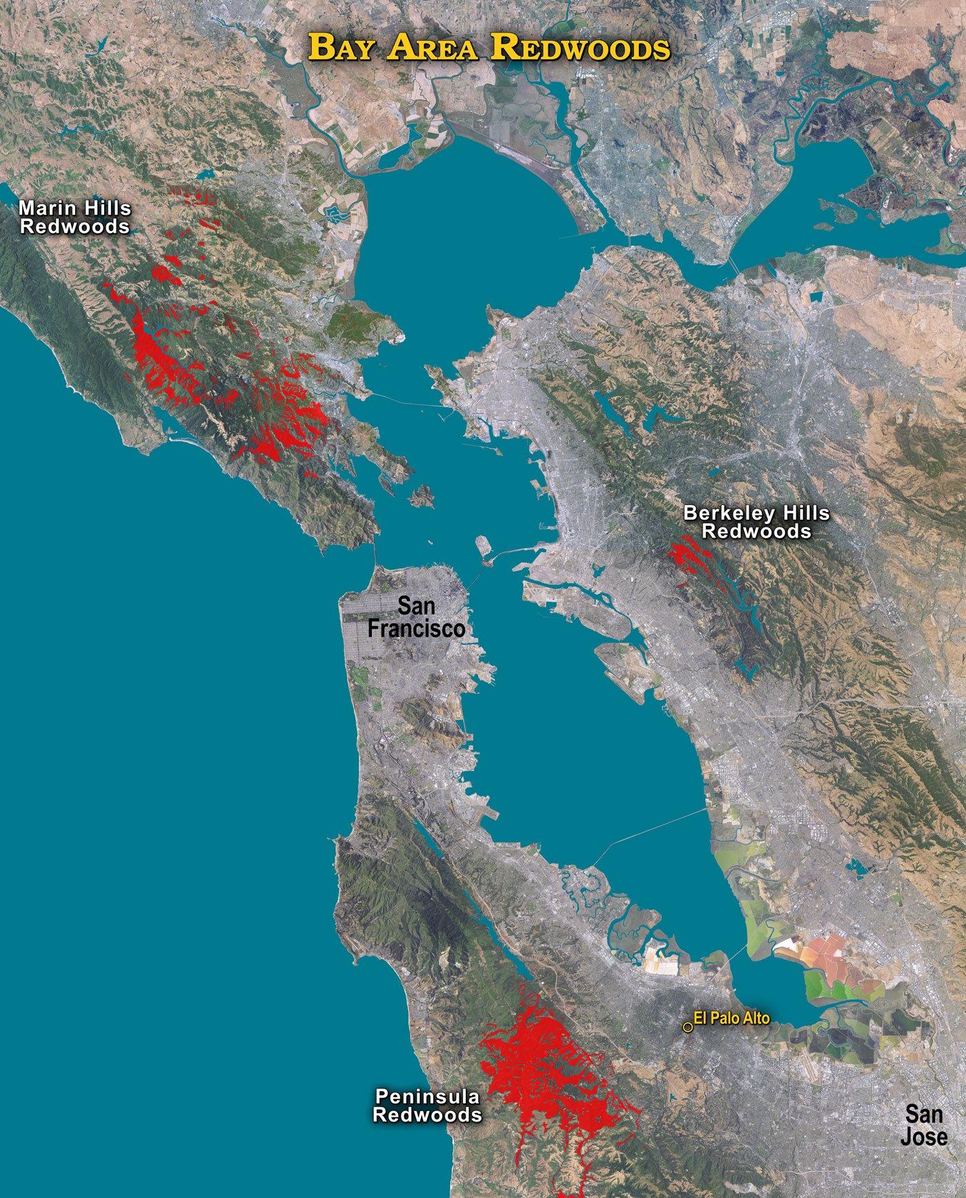 Map of San Francisco Bay Area coast redwoods