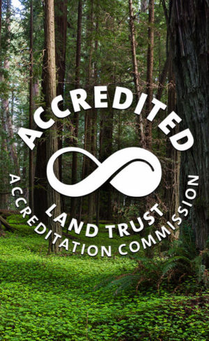 The League's reaccreditation demonstrates sound finances, ethical conduct, responsible governance, and lasting land stewardship.