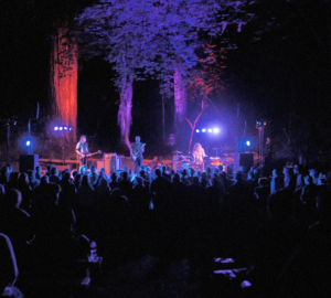 Old Grove Festival at Armstrong Redwoods SNR