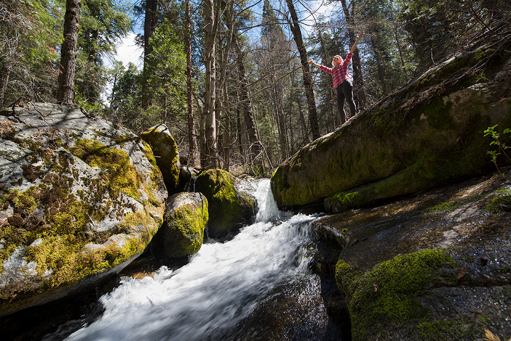 The pristine South Fork of the Tule River rushes through Red Hill Grove. Photo by Paolo Vescia.