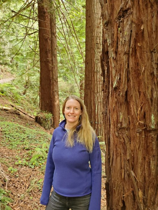 A woman standing next to the trunk of a redwood tree in a forest