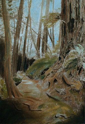'Muir Woods path' by Thomas Flanagan, ArtistsMoving.com