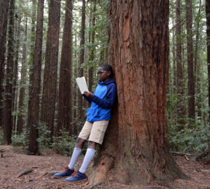 Reading the Redwoods contest. Photo by Annie Burke