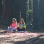 Reading the Redwoods contest. March 10 through May 10, 2018. Photo by Annie Burke