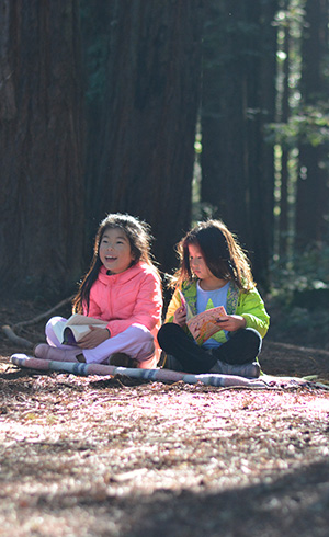 Help the kids in your life learn about redwoods and get the chance to win fantastic prizes. Photo by Annie Burke