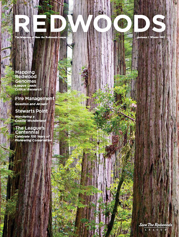 Redwoods Magazine Autumn/Winter 2017