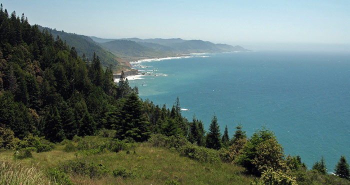 Cape Vizcaino shelters old-growth redwood forest, grasslands, chaparral and beautiful, rugged coastline.