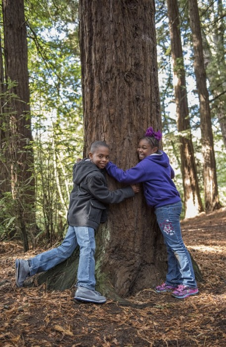 Two students hugging a redwood.