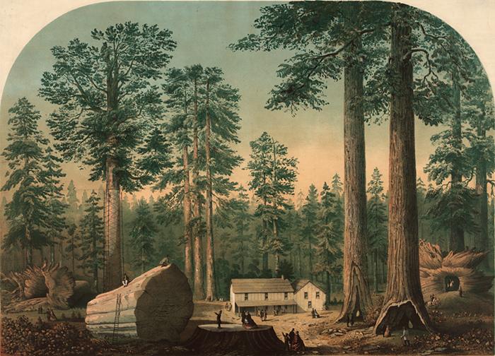 1840s-1860s