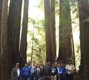 Our group gathers beneath the redwoods at Big Basin.