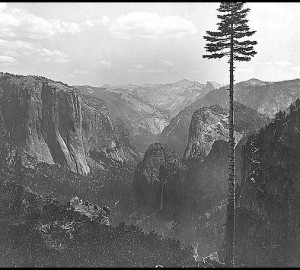 Yosemite Valley – 1866. Photo by Carleton Watkins