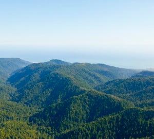 Photo of Big Basin area © 2011 William K Matthias