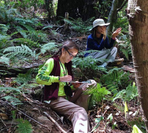 Students set up fern plots and learn scientific field techniques as part of Pepperwood Preserve's TeenNat program.