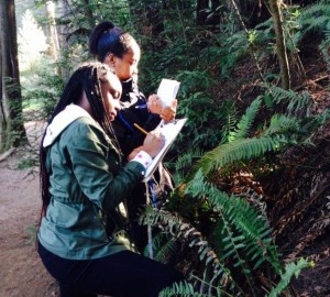 Students collect data on sword ferns as part of our citizen science program Fern Watch.