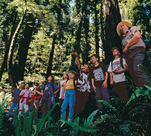 Kids in the redwoods. Photo by Evan Johnson