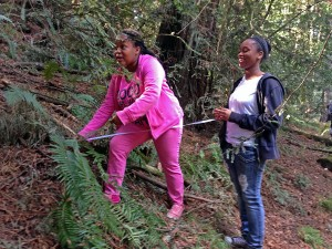 Students measure fern fronds through a Save the Redwoods League education program at Redwood Regional Park. Photo ©Save the Redwoods League.