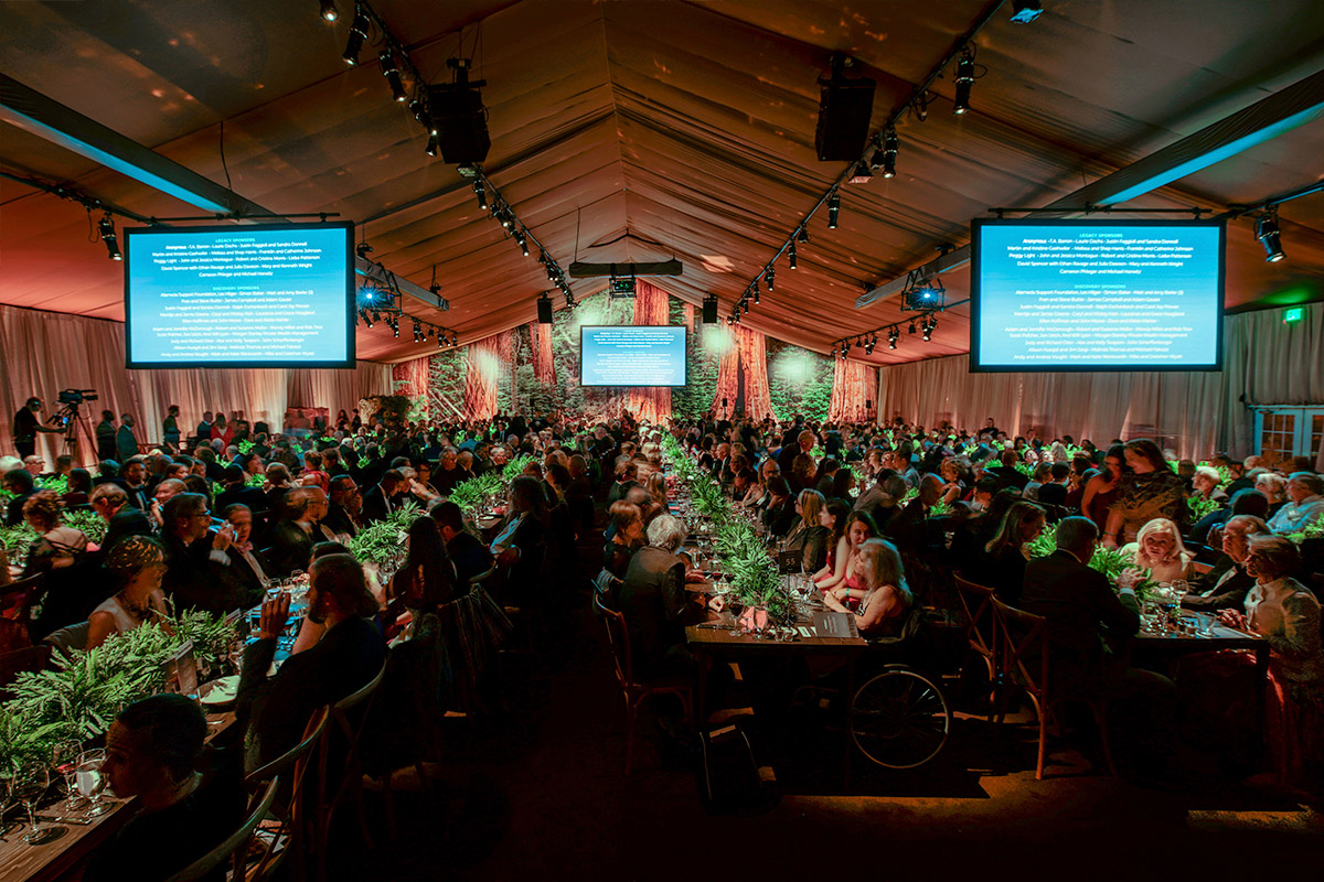 Raised nearly $2 million at our Centennial Celebration Gala, benefitting thousands of students and millions of park visitors with improved access, education, and amenities within the redwood parks