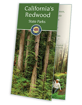 Free California's Redwood State Parks Guide