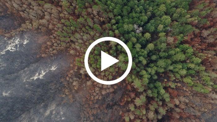 Cascade Creek purchase finalized in wake of fire